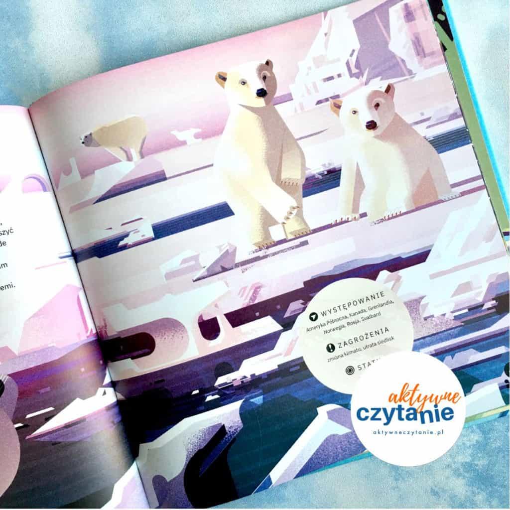 Niedźwiedź polarny książka dla dzieci