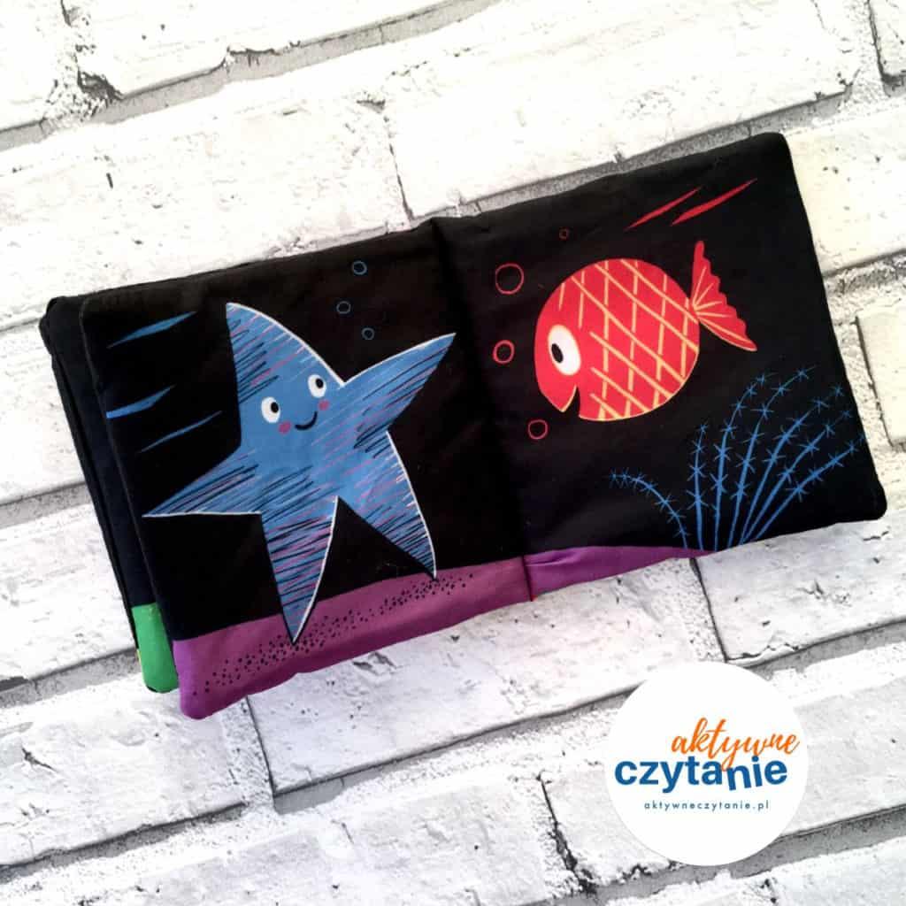 rozgwiazda czerwona ryba
