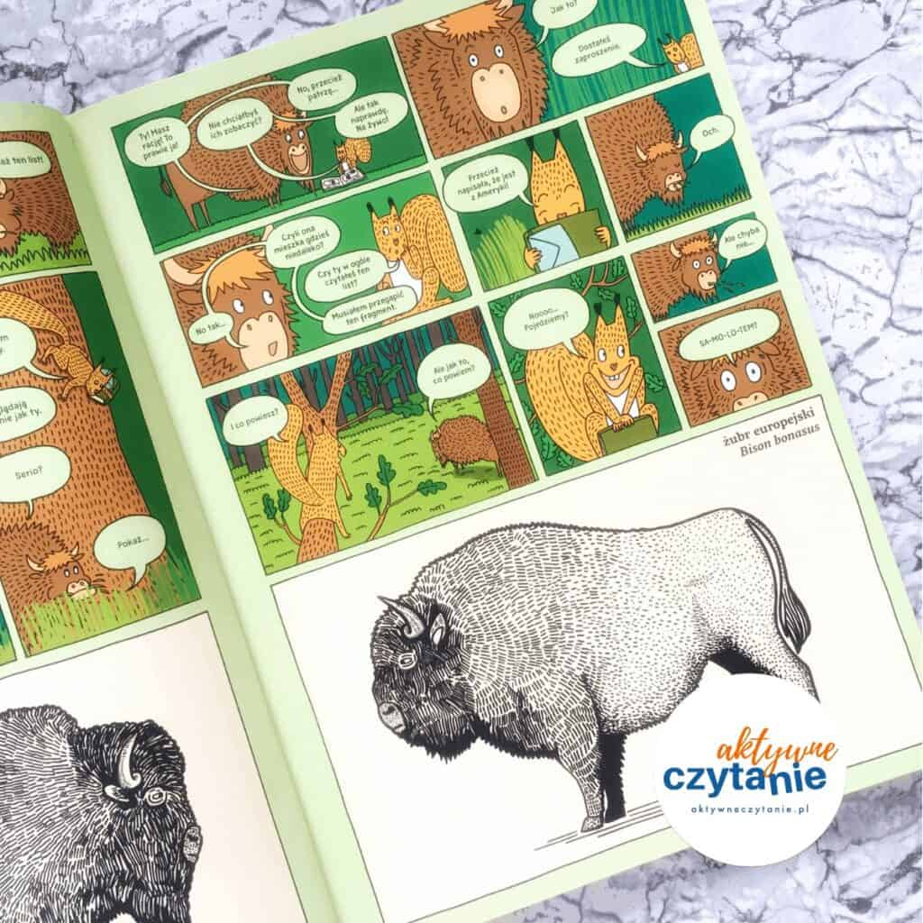 Którędy doYellowstone? ksiązki dla dzieci recenzja aktywne czytanie 2 żubr bizon