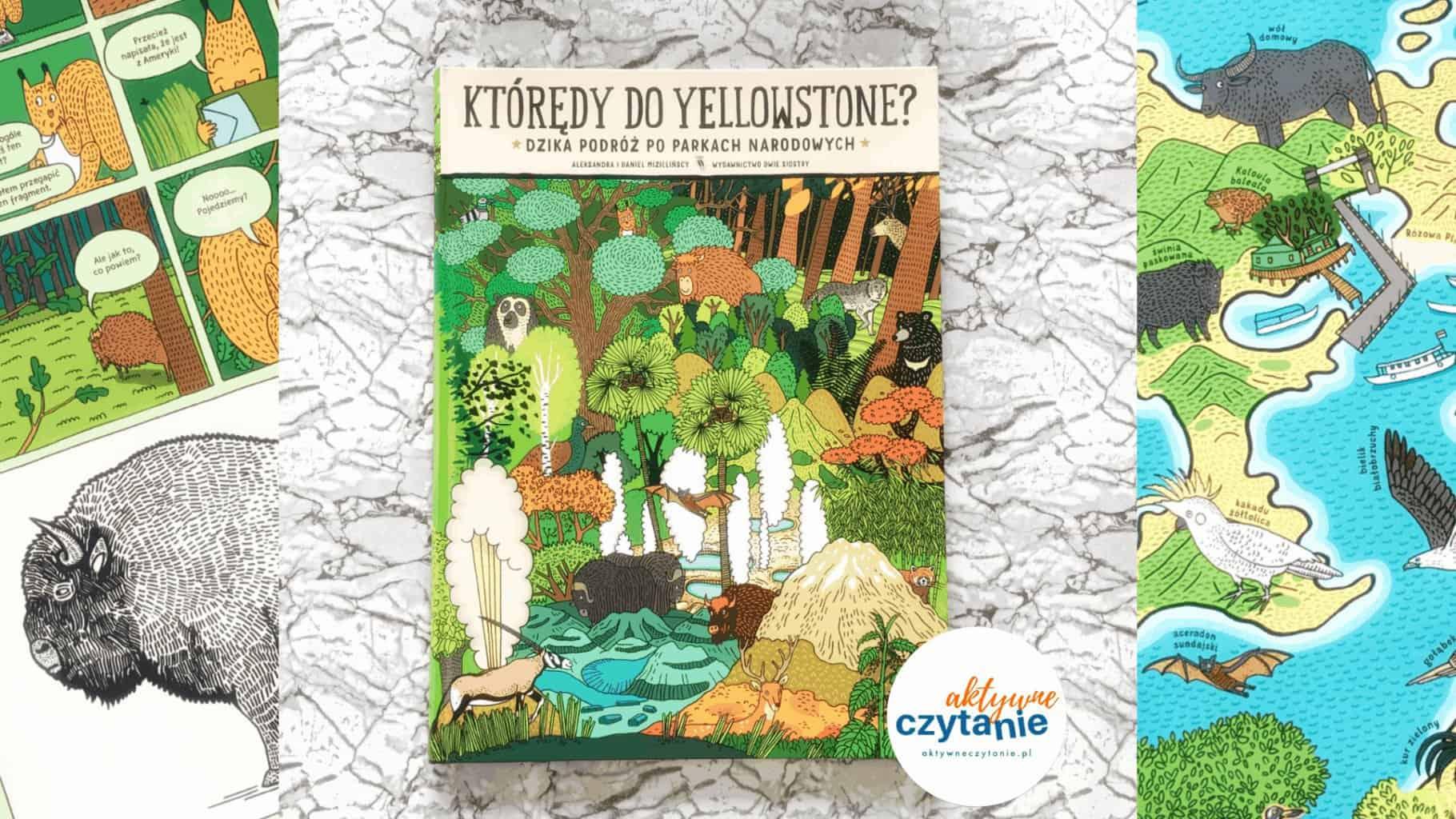 ktoredy doyellowstone dzika podroz poparkach narodowych ksiazka dla dzieci aktywne czytanie recenzja blog