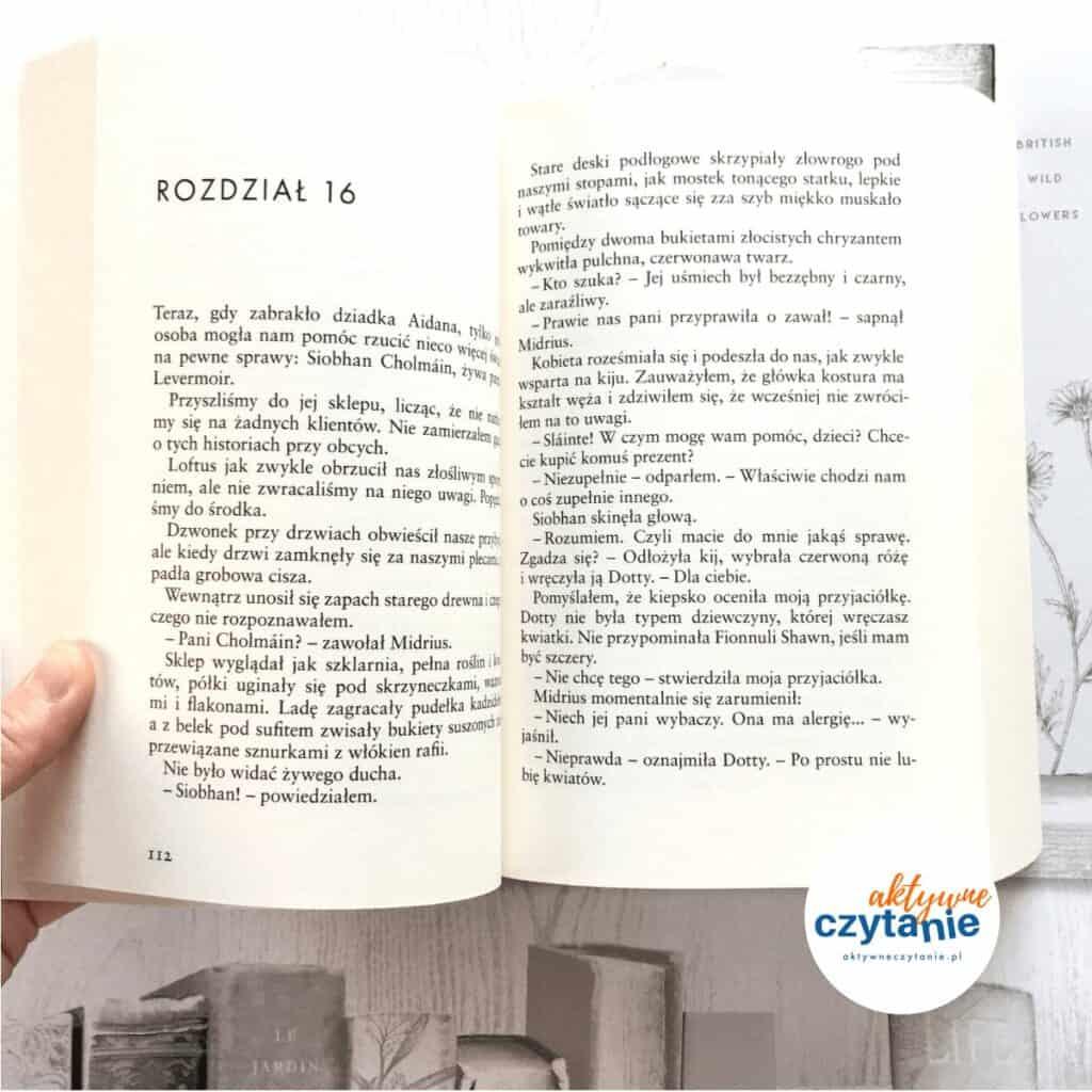 Siódmy element ksiązki dla dzieci aktywne czytanie dla młodzieży 3