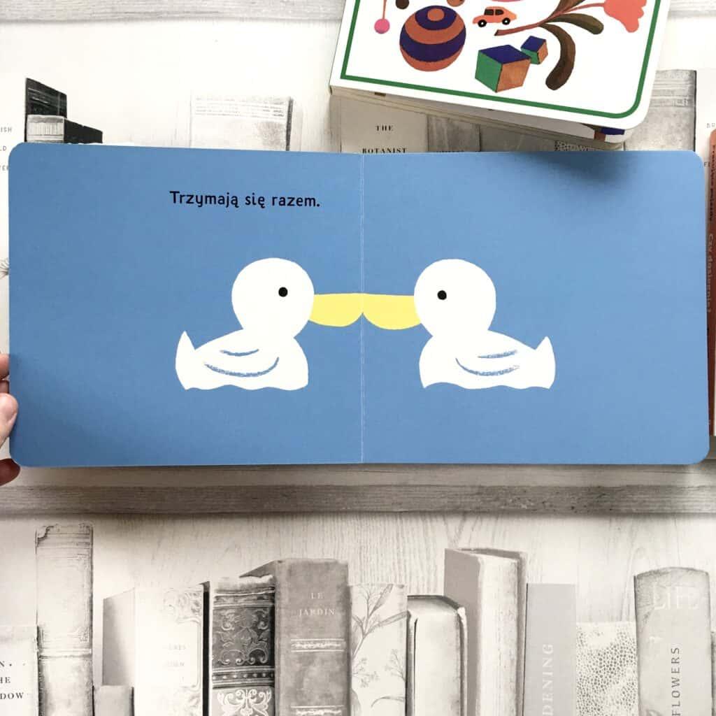 razem-kartonowe-ksiazki-dla-dzieci33