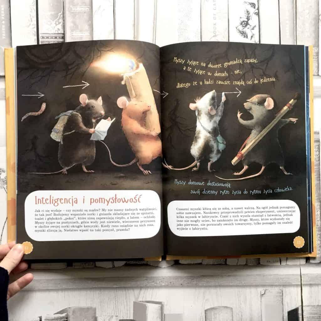 to-ja-myszka-ksiazki-dla-dzieci