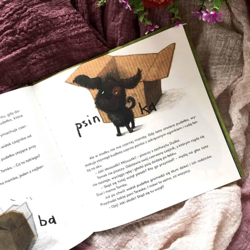 dusia-i-psinek-swinek-zwierzatko-do-kochania1