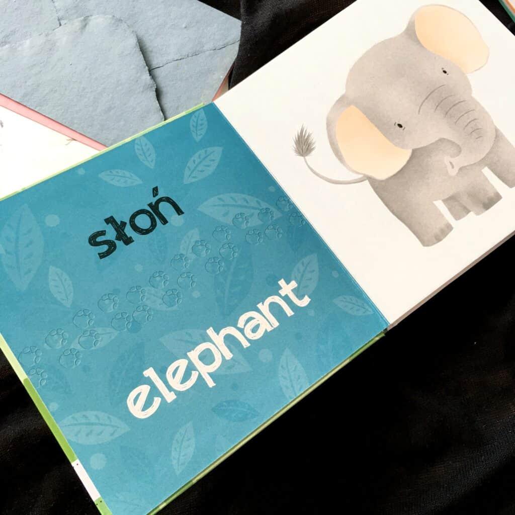 interaktywne-pioro-kakadu-nauka-angielskiego-zwierzeta-swiata4 słon