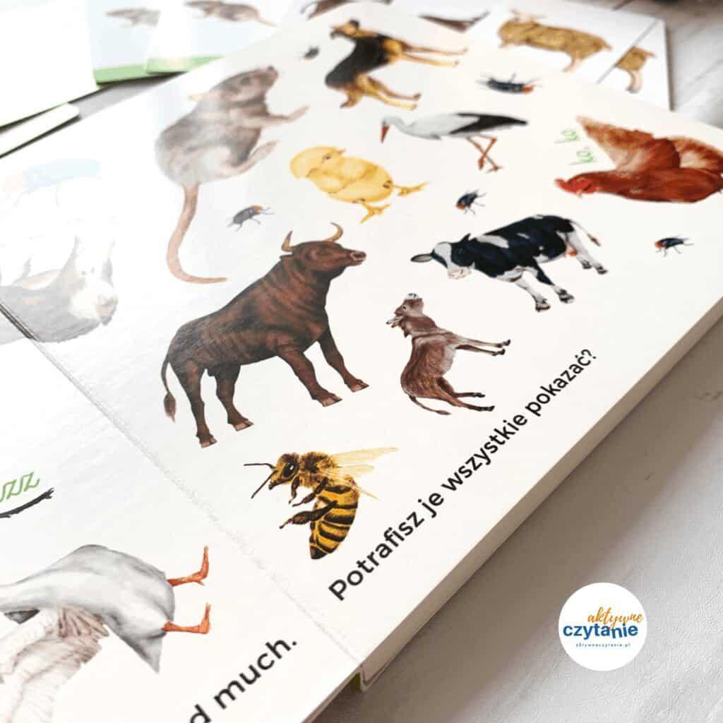 w kolko tosamo wies recenzja ksiazka karty montessori nauka mowienia18