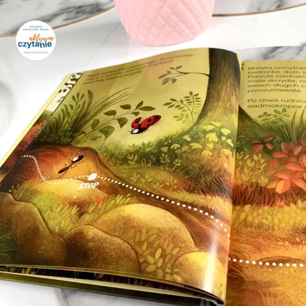 ksiazki dla dzieci wiewiorka mrowka recenzja wielkie male zwierze13