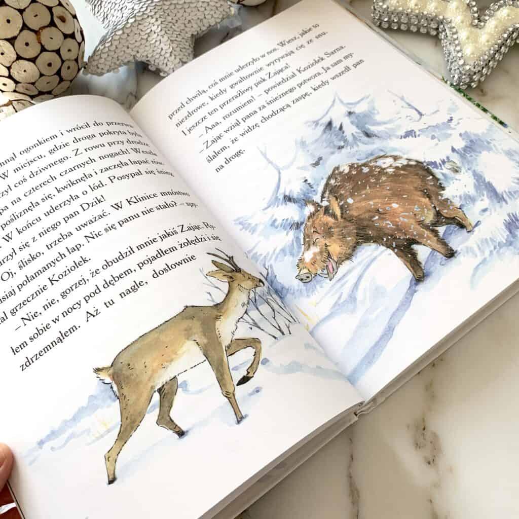 zima wklinice malych zwierzat wlesnej gorce recenzja ksiazki dla dzieci ozimie